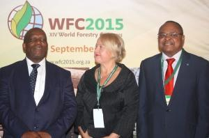 XIV World Forestry Congress launched in South Africa