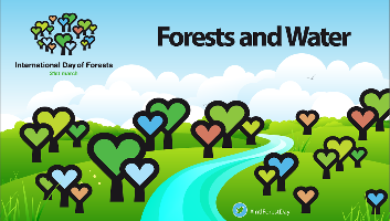 Celebrating forests and water on International Day of Forests 21 March