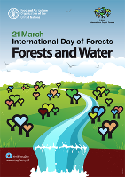 FAO celebrates International Day of Forests 2016