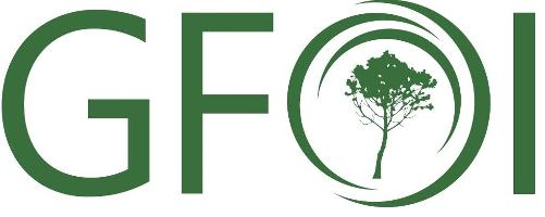 New tool to guide countries in forest monitoring and emissions reporting