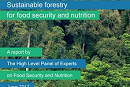 Sustainable Forestry for Food Security and Nutrition: the new HLPE report