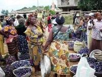 """Where """"food security"""", """"health"""" and """"income"""" grow on trees: opportunities for forest-dependant entrepreneurs in Central Africa"""