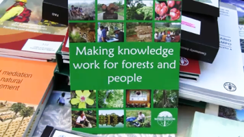 Making forest knowledge work