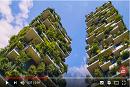 2018年国际森林日: 森林和可持续城市