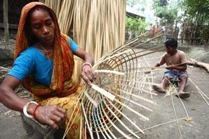 El Cambio Climático enfatiza la necesidad de que las mujeres asuman un papel mayor en el manejo forestal