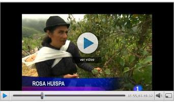 Nuevo vídeo: Los proyectos forestales de la FAO en Ecuador
