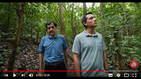 Reclaiming the forests of Costa Rica