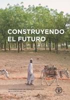Programa Forestal de la FAO 2012-2013