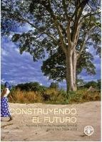Programa forestal de la FAO 2008-2009