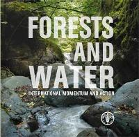 Forests and Water – International Momentum and Action