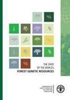 El Estado de los Recursos Genéticos Forestales en el Mundo: Síntesis informativa