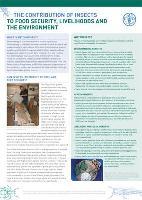 La contribution des insectes à la sécurité alimentaire, aux moyens de subsistance et à l'environnement
