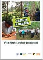 Strength in Numbers: Effective forest producer organizations