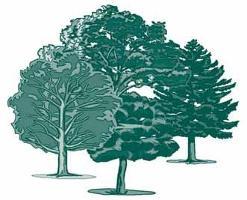 Non-Wood News 23: November 2011