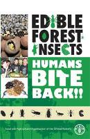Edible forest insects: humans bite back