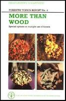 More than Wood: Special options on multiple use of forests