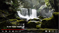 Forests and water: International Day of Forests 2016