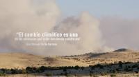 Bosques y cambio climático - Día Internacional de los Bosques 2015