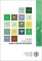 El Estado de los Recursos Genéticos Forestales en el Mundo: Sintesis informativa