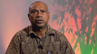 Progress by Papua New Guinea leads to first forest reference level report for UNFCCC