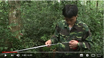Developing an innovative National Forest Inventory in Viet Nam