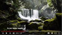 Protéger le forêts, protéger l'eau