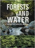 Forests and Water - International Momentum and Action