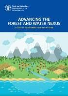 Advancing the forest and water nexus — a capacity development facilitation guide