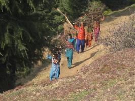 Celebrating mountains in Kashmir, India