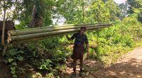 Putting bamboo on the map