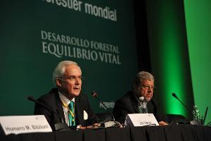 «El planeta nunca ha necesitado más que ahora una ordenación forestal mundial »